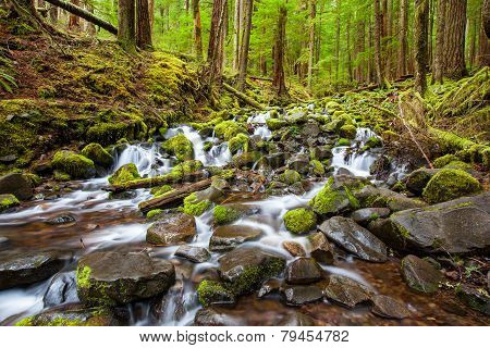 Cascade Waterfall In The Forest