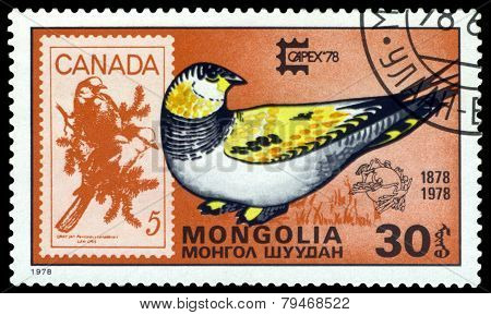 Vintage  Postage Stamp. Tibetan Sand Grouse  And Canada.