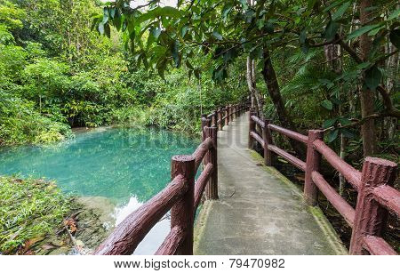 Pathway located in deep forest over Natural Blue Lagoon