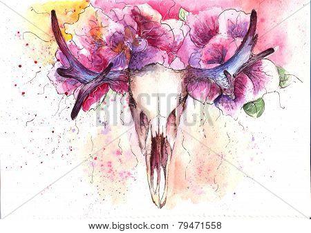 skull deer