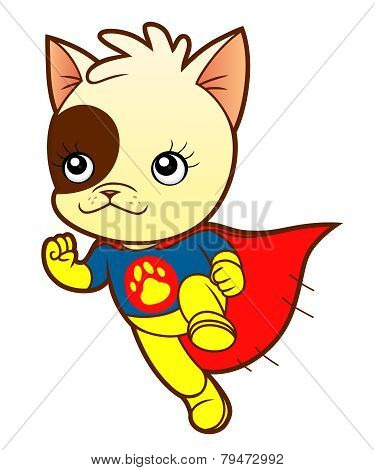 Kitten Super Hero