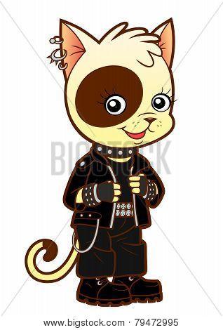 Heavy Metal Kitten