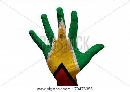 Palm Flag Guyana