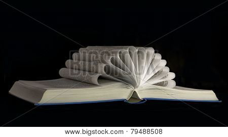 Open Book Isolated On Black Background