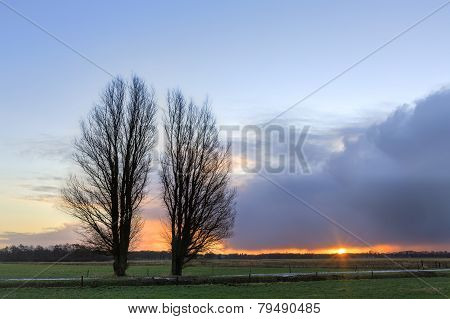 Trees In A Winter Landscape At Sunrise