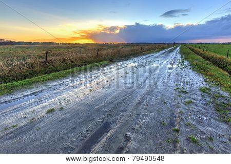 Muddy Wet Sand Lane In Grassland Landscape