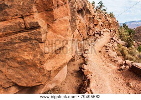Grand Canyon's Path