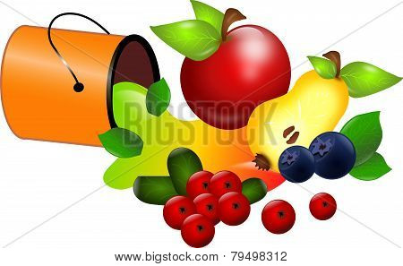 Can Of Fruits