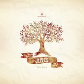 picture of olive trees  - Olive label - JPG