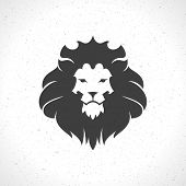 pic of lion  - Lion face logo emblem template for business or t - JPG