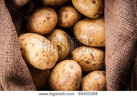 Harvest Potatoes In Burlap Sack