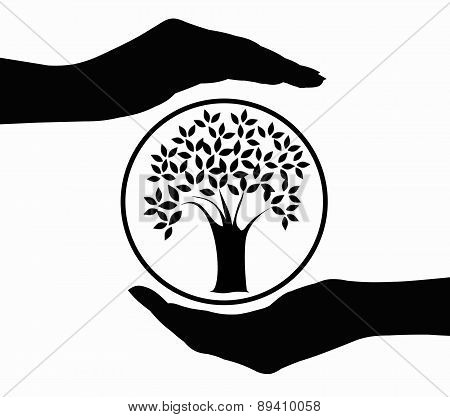 Tree in hands icon