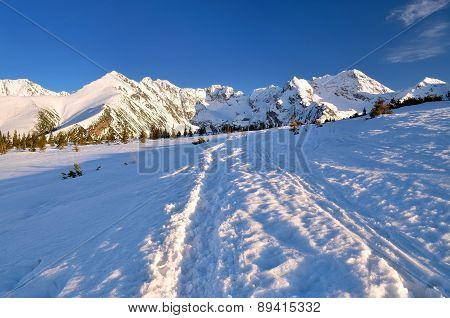 Winter Mountain Path.