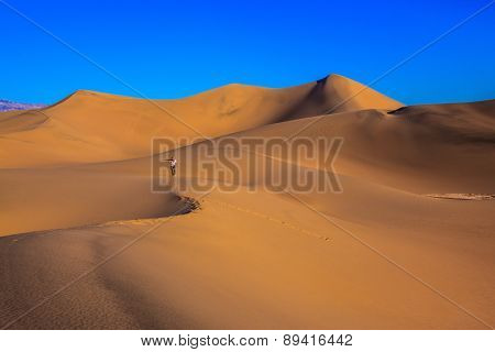 Sunrise in the orange sands of the desert Mesquite Flat, USA. Middle-aged woman - photographer in a striped T-shirt among the sand dunes photographed with a tripod