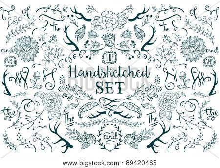 Hand-drawn vector floral design elements in rustic style.