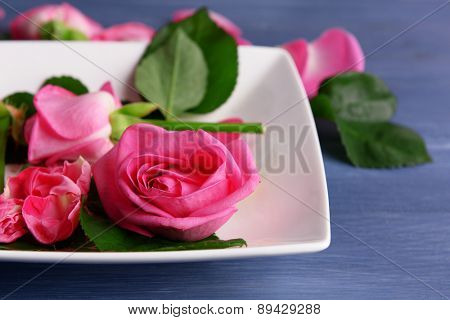 Beautiful pink roses in white plate on wooden table, closeup