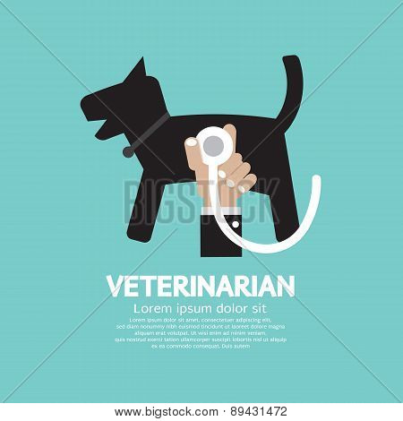 Doctor's Hand With Stethoscope Checking On Dog's Body Veterinarian Concept.