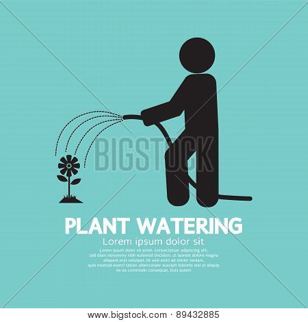 Plant Watering With Rubber Hose Tube.