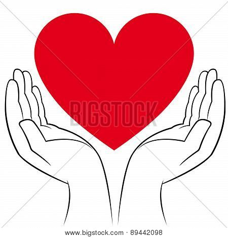 Heart In Human Hands