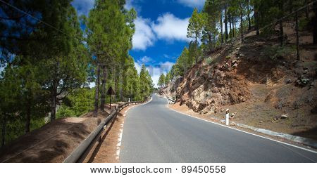 Gran Canaria, Road In Las Cumbres, The Highest Areas Of The Island