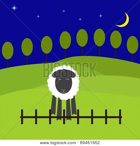 Night Landscape With Sheep