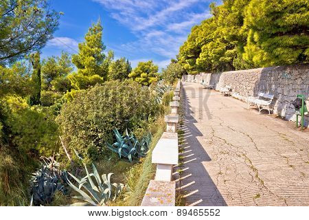 Marjan Hill Above Split Mediterranean Walkway