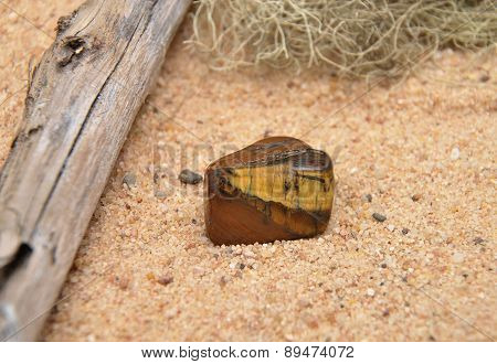 Tigers Eye On Beach