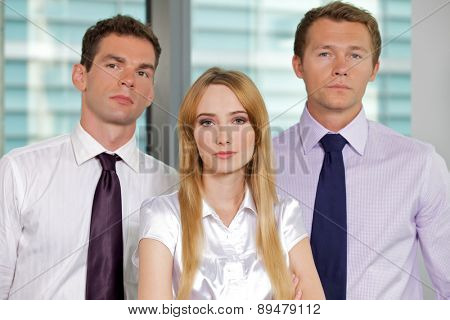Portrait of business executives at office