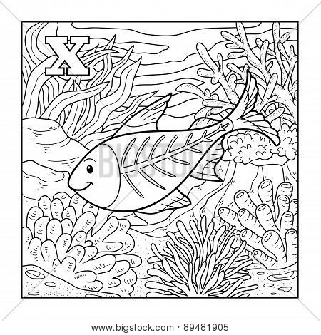 Coloring Book (x-ray Fish), Colorless Illustration (letter X)