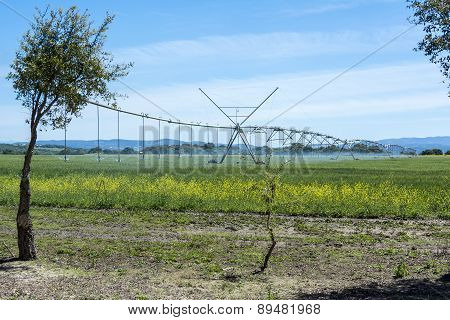 Industrial Irrigation Of Crops