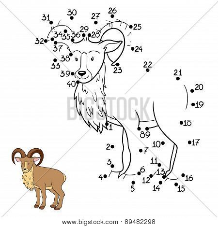 Numbers Game (urial)