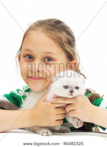 Kid Hugs British Lop-eared Kitten