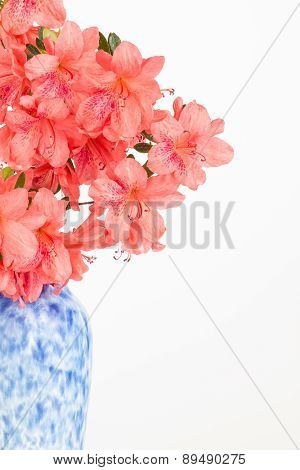 Salmon Pink Flower Arrangement