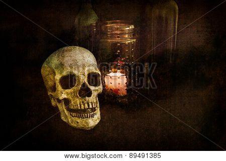 Grunge Skull Still Life