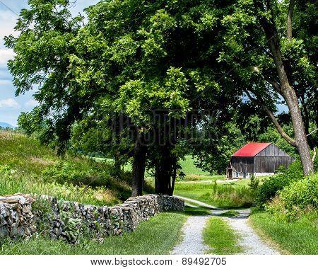 Farm Lane in Antietam
