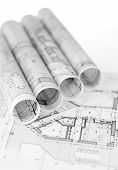 pic of blueprints  - rolls of architecture blueprints  - JPG