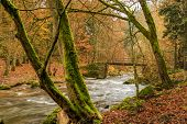 foto of cataract  - torrential brook in autumn forest - JPG