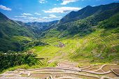foto of rice  - Rice terraces in the Philippines - JPG