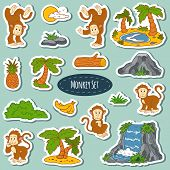 image of marmosets  - Set of various cute monkey vector stickers of animals and items of nature - JPG