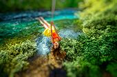 stock photo of sulky  - Happy young woman swinging with bungee above the river in the forest - JPG