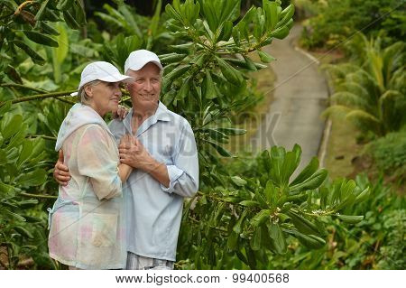 Happy  elderly couple standing embracing in a tropical forest