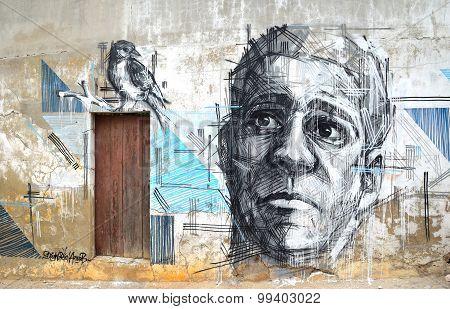 Graffiti art of Face and Bird