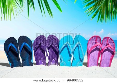 Some Flip Flops Under Palm Fronds