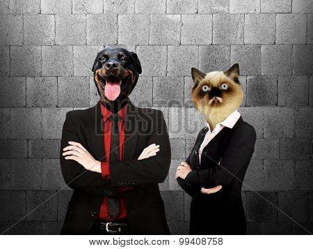 Animal Head Business Team
