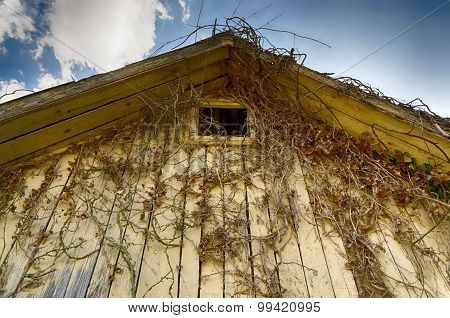 roofing of an abandoned wooden house