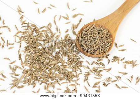 Caraway (carum Carvi) Seeds