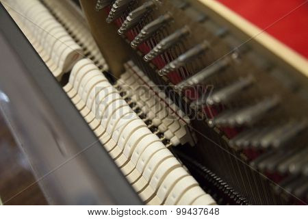 Piano inside - acoustic unit, strings, tuners