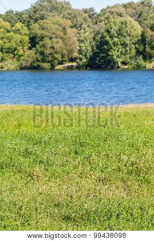 Green Grass On Riverbank In Summer Day