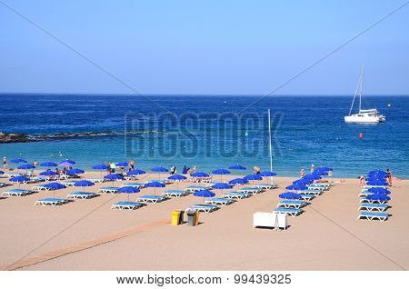 Beautiful Playa de las Vistas in Los Cristianos on Tenerife, Spain