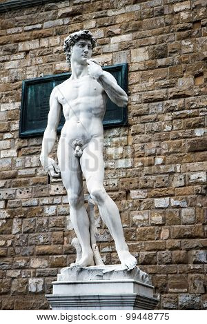 Copy of Michelangelo's David statue standing in its original location, in front of the Palazzo Vecch
